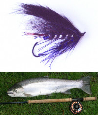 Cowlitz Dancer Steelhead Fly - Product Image