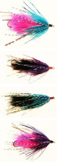 Spider Leech - Product Image
