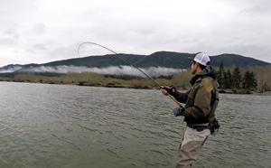 Playing 20 Lb Steelhead