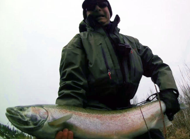 Jeff Layton, Intruder Fly Caught Steelhead
