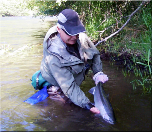 Steelhead Flies and Articles