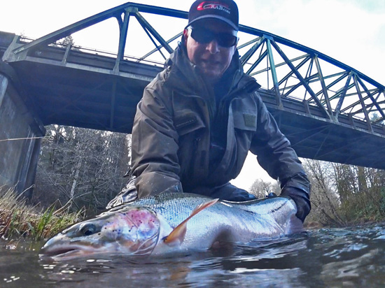 Improved Methow Moal Steelhead