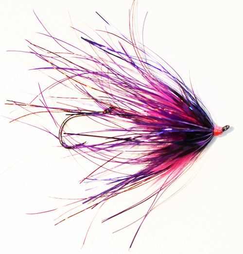 Mini Rhea Taco Purple/Pink for Steelhead