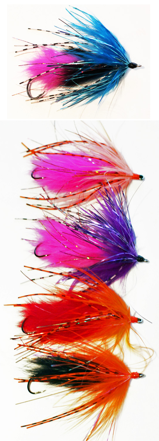 Bright Colored Spider Leeches
