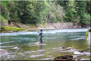 Fly Fishing Casting Lessons