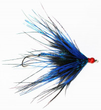 Fish Taco Primo Supreme, Blue and Black Tipped - Product Image
