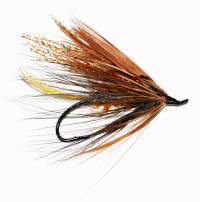 Lady Caroline with Pheasant Wing Spey - Product Image