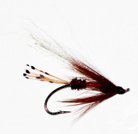 Royal Coachman Bucktail - Product Image