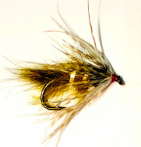 Soft Hackle Hare's Ear, Light Olive - Product Image