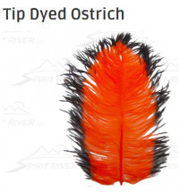 Tip Dyed Ostrich - Product Image