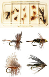 Trout fly collection of 12 flies - Product Image