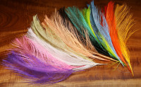 UV2 Raptor Rhea Hackle - Product Image
