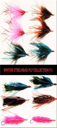 Winter Steelhead Fly Collection (1) - Product Image