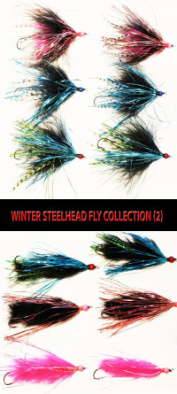 Winter Steelhead Fly Collection (2) - Product Image